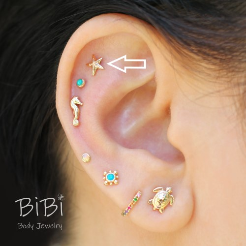 BiBi Body Jewelry, 14KY Starfish Stud Earring, On Ear 1